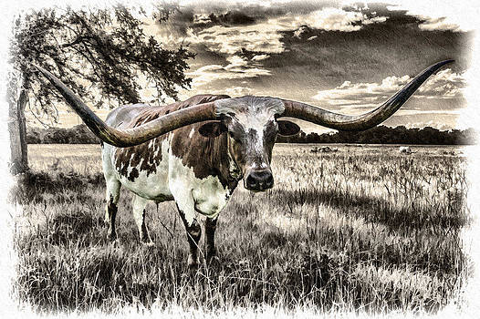 Longhorn - Chrome Plated Star by Ray Keeling