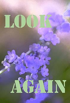 Pamela Cooper - Look Again