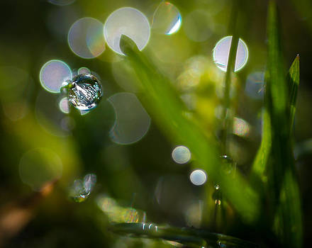 Look Into My Crystal Ball by Julie Jamieson