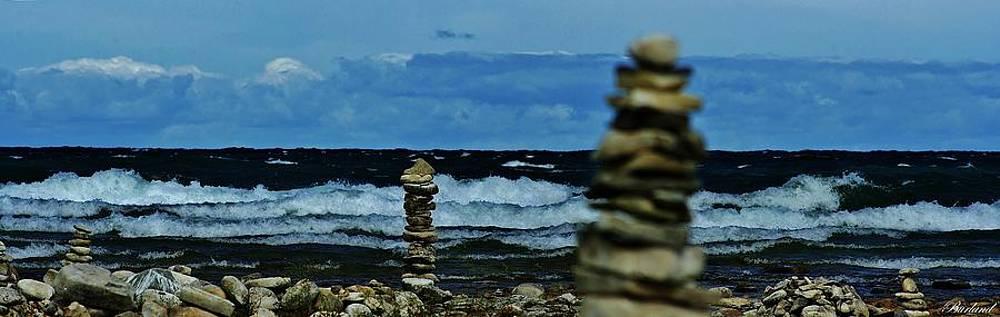 Looking Ahead by Burland McCormick