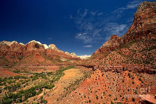 Adam Jewell - Looking Dow Zion Canyon