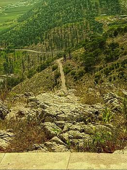 Sandra Pena de Ortiz - Looking Down Mount Precipice
