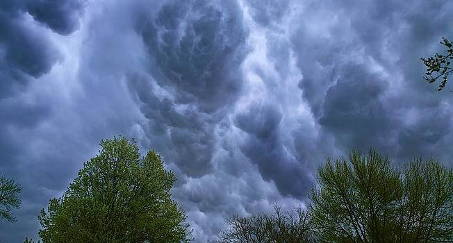 Looking For Rotation by Larry Bodinson