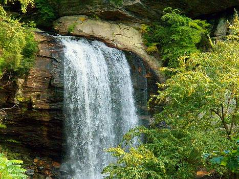 Looking Glass Falls 2 by Joyce Kimble Smith