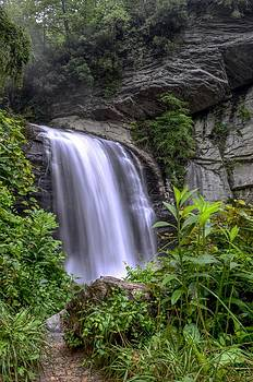 Looking Glass Falls by Bob Jackson