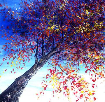 Looking Up by Ann Marie Bone
