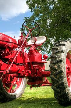 Looking Up Farmall by Heather Allen
