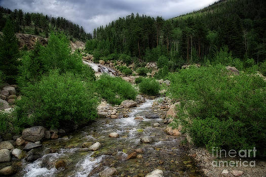 Jon Burch Photography - Looking Upstream