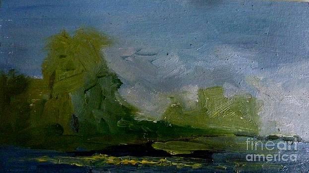 Looming storm by Victoria  Tekhtilova