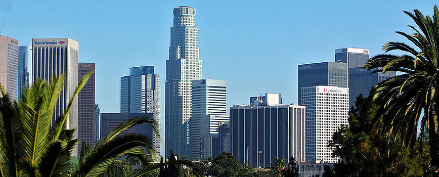 Los Angeles City by Cedric Darrigrand