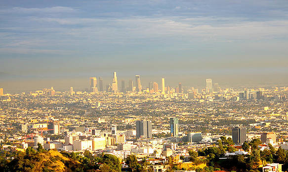 Los Angeles Skyline by Gary Dunkel