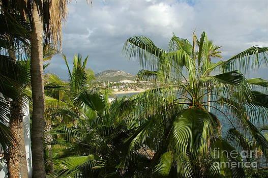 M West - Los Cabos