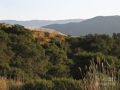Los Laureles Ridgeline by James B Toy