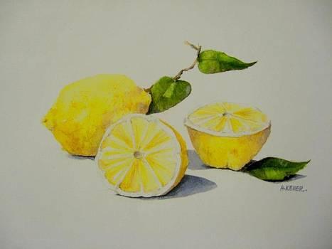 Los Limones by Ally Keller