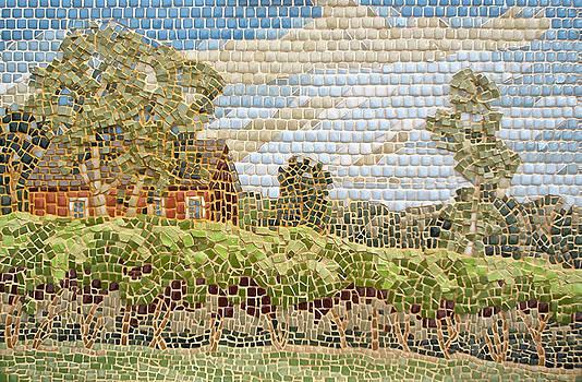 Lost Acres Vineyard by Teresa Tromp