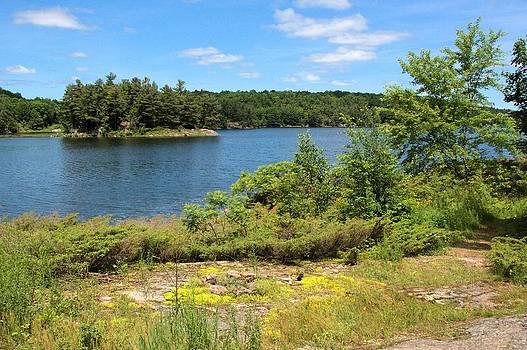 Valerie Kirkwood - Lost Bay Nature Reserve 2