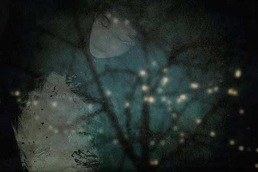 Lost in a Dream by Sharon Kalstek-Coty