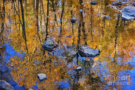 Lost in fall's Reflections by SCB Captures