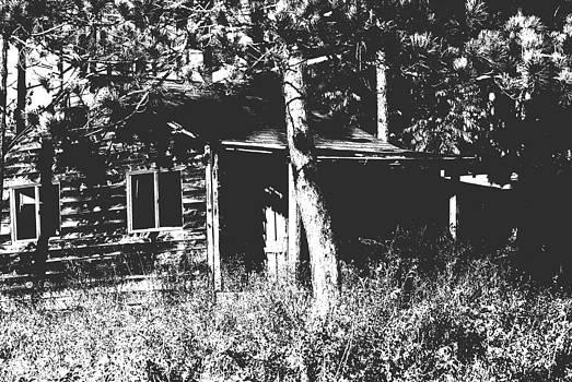 Joe Bledsoe - Lost in the Woods