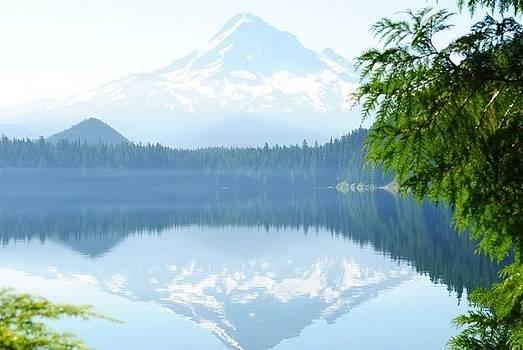 Lost Lake by Jody Smith
