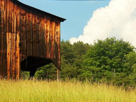 Lost River Barn by Joyce Kimble Smith