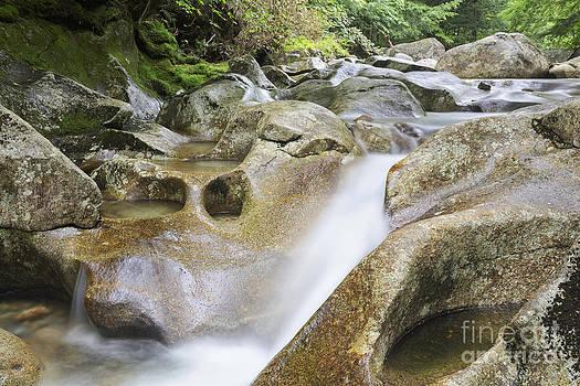 Erin Paul Donovan - Lost River - Kinsman Notch New Hampshire USA