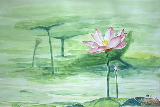 Lotus 2014 A by Beng Lim