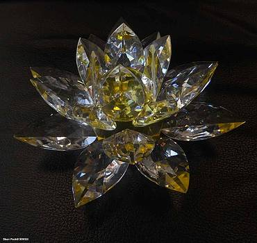 Lotus Flower Crystal by Shan Peck