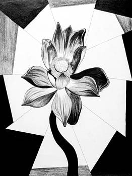 Lotus Flower Kenal by Kenal Louis