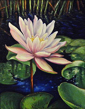 Lotus Flower by Michelle East