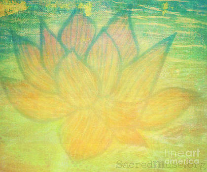 Lotus Flower by Sacred  Muse