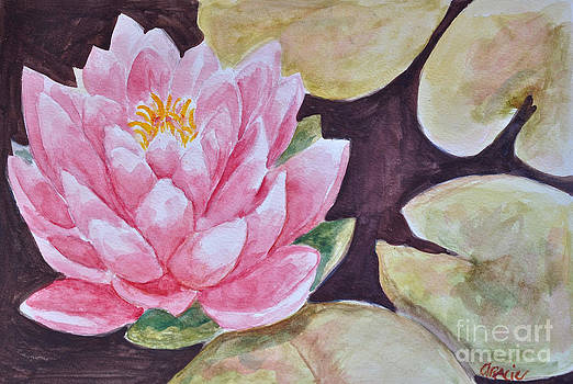 Lotus in the Lake by Gracie Hampton
