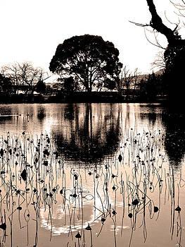 Larry Knipfing - Lotus Pond Winter - 7