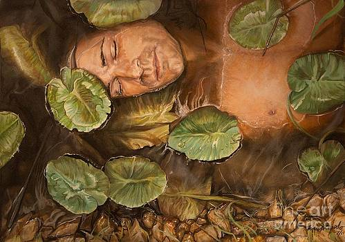 Lotus  by Tom  Acevedo