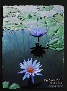 Lotus2 by Gail Fischer