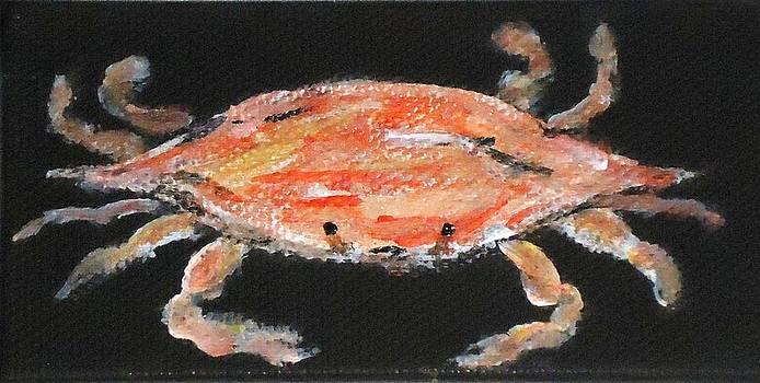 Louisiana Crab by Katie Spicuzza