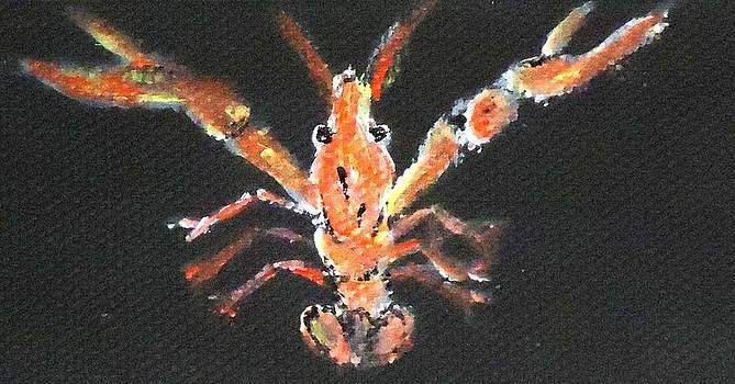 Louisiana Crawfish by Katie Spicuzza