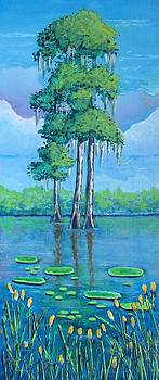 Louisiana Cypress by Suzanne Theis