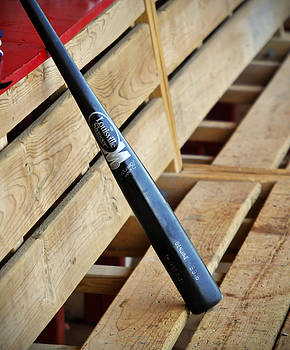 Louisville Slugger by Evan Butler