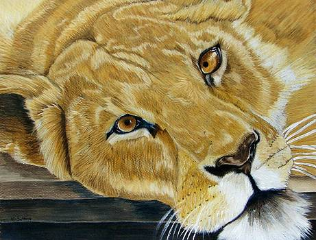 Lounging Lioness by Lea Sutton