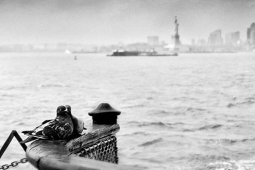 Love Birds by Eric Ferrar