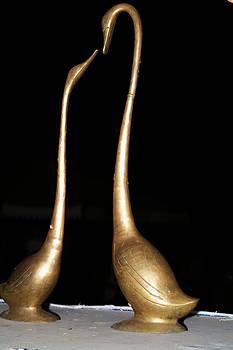 Devinder Sangha - Love Birds of Brass