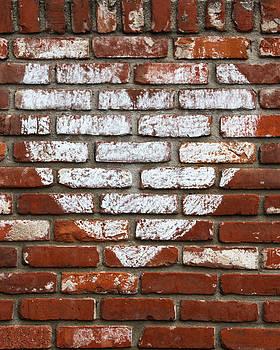 Guy Shultz - Love Bricks