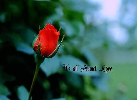 Gary Wonning - Love