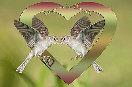 Love is in the Air by Bonnie Barry