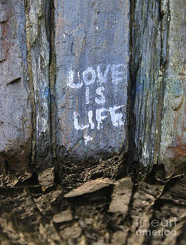 Love is Life by Michael Mooney