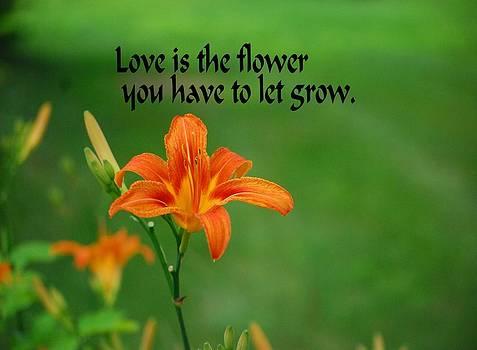 Gary Wonning - Love is the Flower