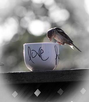 Love by Kathy J Snow
