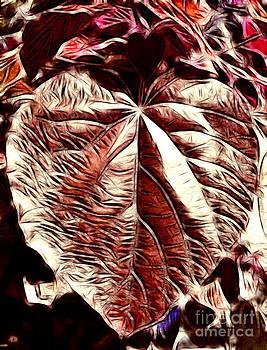 Love Leaf by Matthew Naiden
