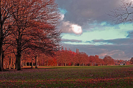 Lovely Autumn view by Nadeesha Jayamanne